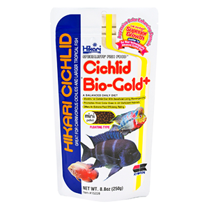 Hikari Cichlid Biogold Plus (Mini Pellet) – 250g by www.aquastore.in