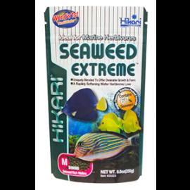 Hikari Marine Seaweed Extreme-small pellets -100g by www.aquastore.in